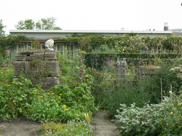 Eetbare tuin bloemen in de tuin for Tuinontwerp eetbare tuin