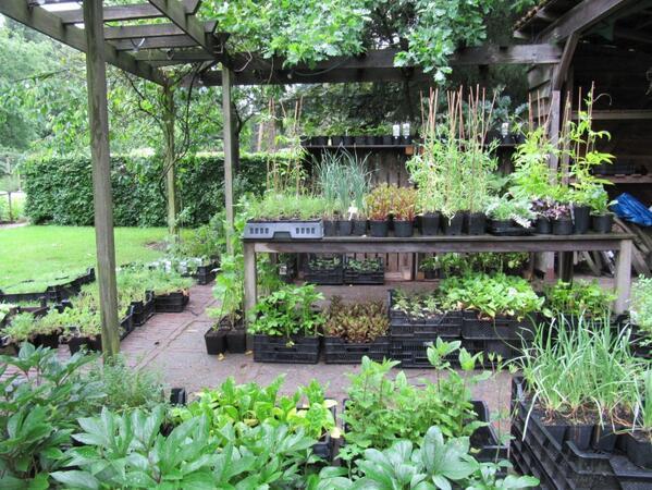 Plantenkraam mei 39 14 bloemen in de tuin for Tuinontwerp eetbare tuin