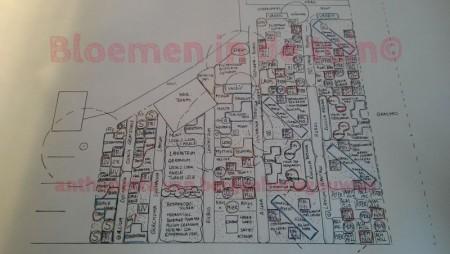 Beplantingsplan Stinzetuin  Erve Kolkenstein